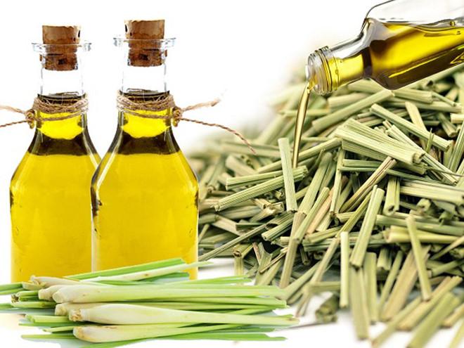 Tinh dầu sả một trong những loại tinh dầu được sử dụng phổ biến nhất hiện nay