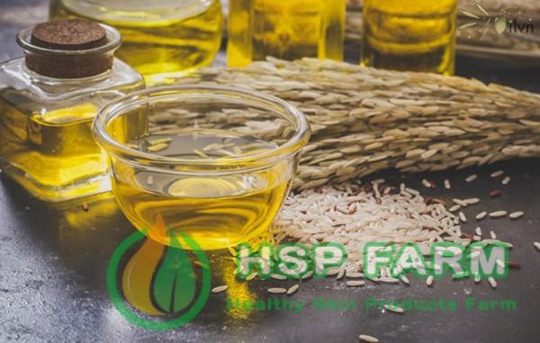 Photo of Cách sử dụng tinh dầu cám gạo hiệu quả tốt nhất 2021
